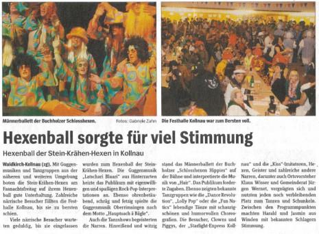 Pressebericht des Elztäler Wochenberichts vom 26.02.2009