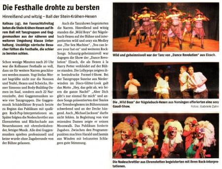 Pressebericht der Badischen Zeitung vom 18.02.2010